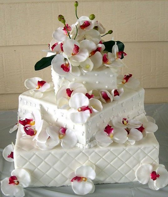 Cake in Fort Lauderdale - Christine's Specialty Cakes
