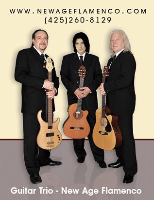 Musicians in Seattle - Acoustic Guitar Trio