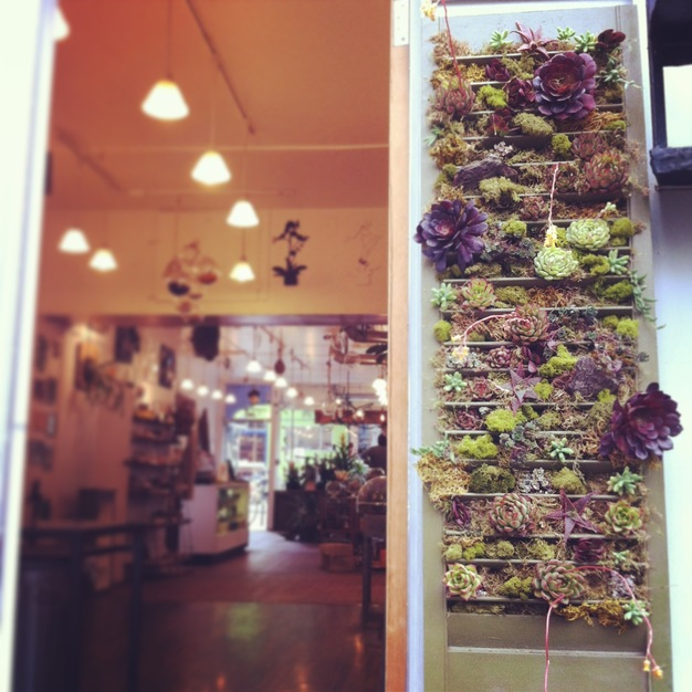 Florists in San Francisco - Lover Bee Botany