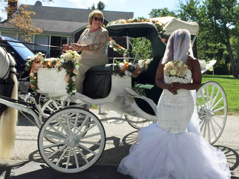 Transportation in Mount Airy - Diana's Wedding Horses