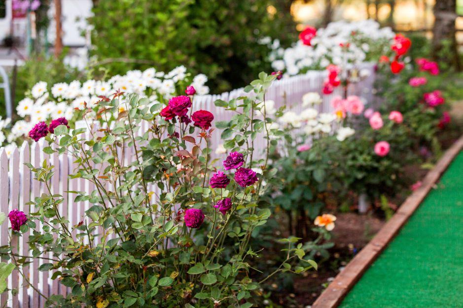 Vintage Gardens - A charming farm venue for events - Best Wedding ...