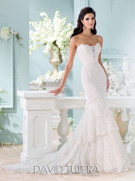 Dress & Apparel in Valdosta - Elaine's Bridal and Formals