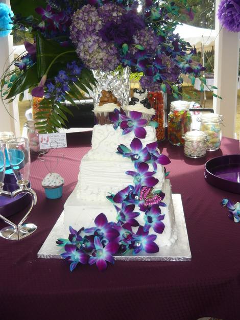 Reception Location in Monroe - McDaniel-Tichenor House