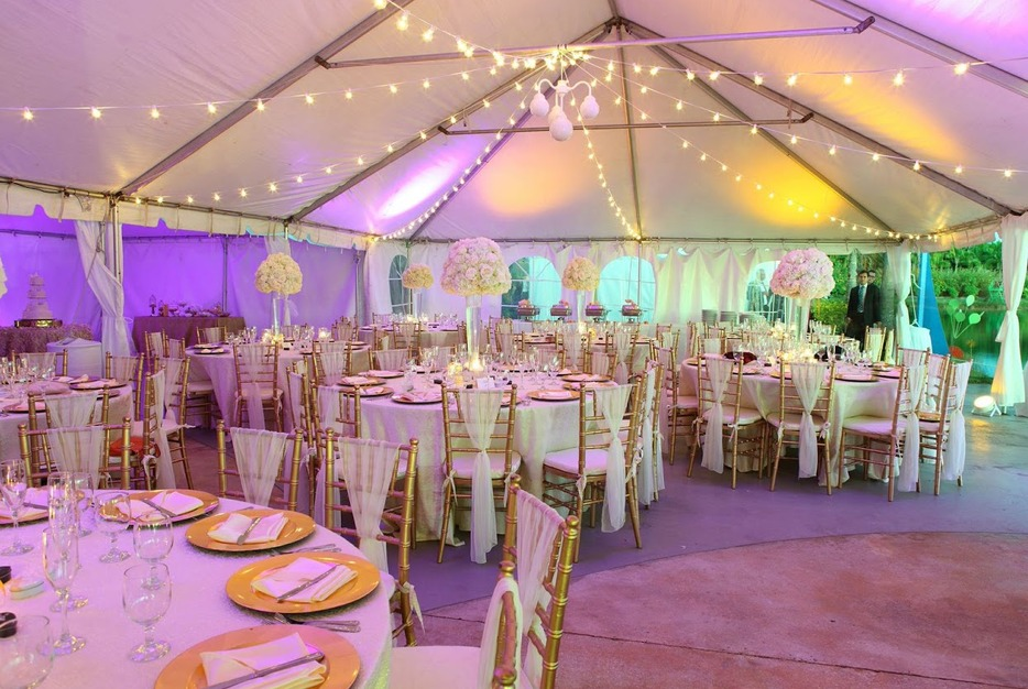 Royal Palm Island Best Wedding Reception Location In Miami