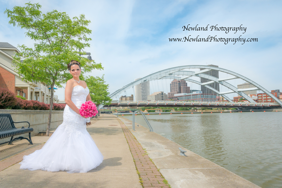 Photographers in Rochester - Newland Photography