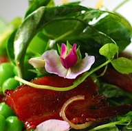 Planner in New York - Rex Duvall Caterers