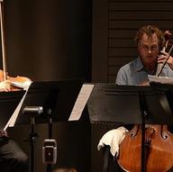 Musicians in Birmingham - Amion String Quartet
