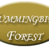 Florists in York - Hummingbird Forest