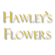 Florists in Painesville - Hawley's Flowers