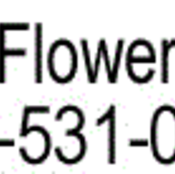 Florists in Vero Beach - The Flower Box