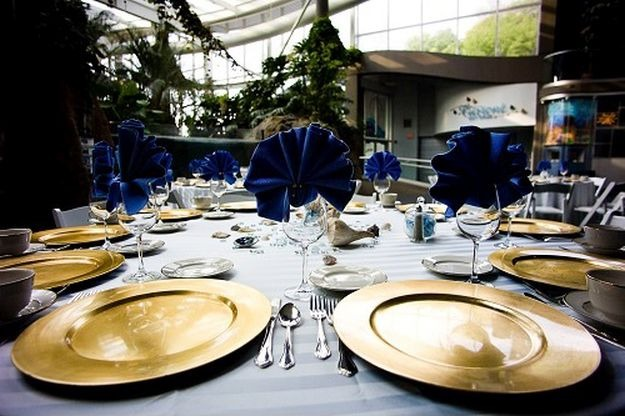 Pittsburgh Zoo And Ppg Aquarium Best Wedding Reception Location