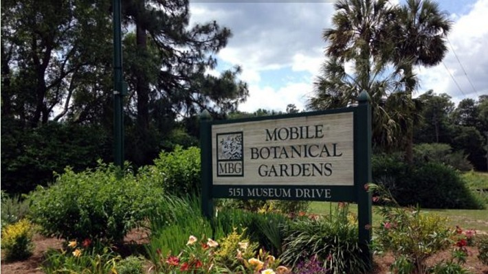 About Mobile Botanical GardensMobile Botanical Gardens   Mobile  AL   Venue   Wedding com. Mobile Alabama Botanical Gardens. Home Design Ideas
