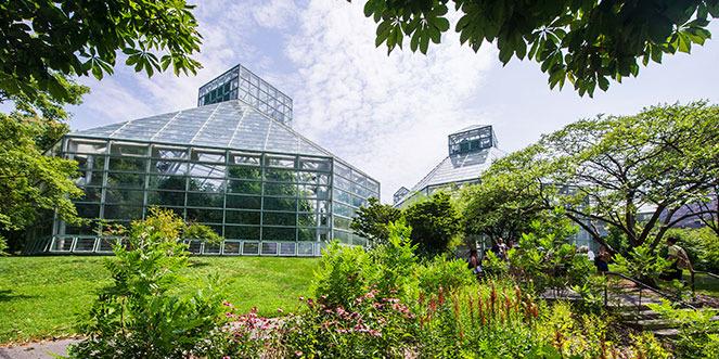 Palm House At Brooklyn Botanic Garden Best Wedding Reception Location Venue In Brooklyn